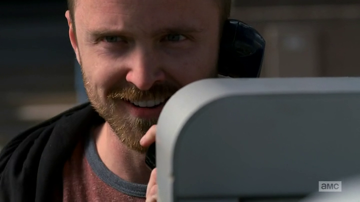 "Breaking Bad Review – ""Rabid Dog"" S5E12"
