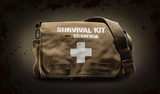 Shut Up and Take My Money: The Walking Dead Survival Kit