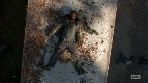 "The Walking Dead Review ""Alone"" S4E13"