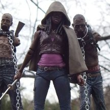 Michonne and Her Pets Action Figures