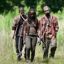 Michonne and Her Pets in the TV Series
