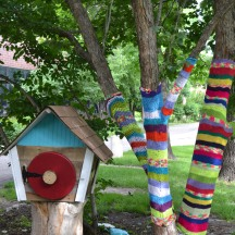 Even the trees are crocheted in Denver