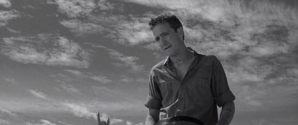 scott wilson in cold blood